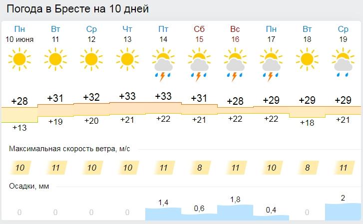 Синоптики — о погоде на неделю: Жара усилится. В Бресте до +33