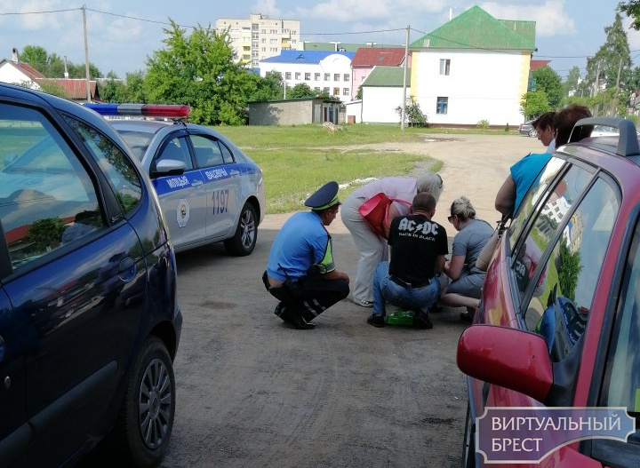 Ивацевичи: двигаясь задним ходом, водитель совершил наезд на 87-летнюю женщину