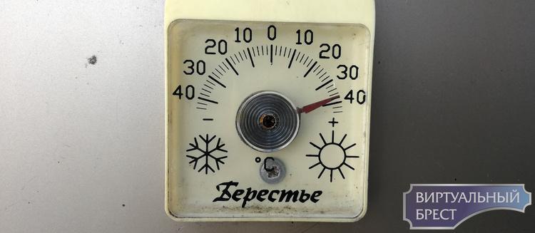 Жара в Беларуси сохранится до конца недели. Плюс 34 в Бресте