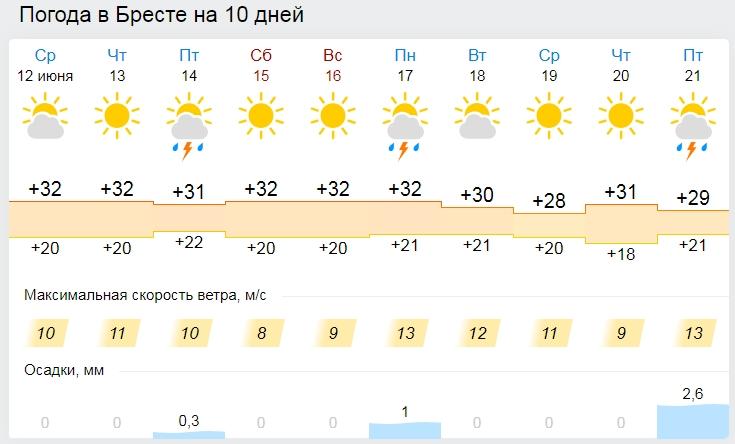 Жара до 33 градусов ожидается в Беларуси 13 июня (и в Бресте тоже)