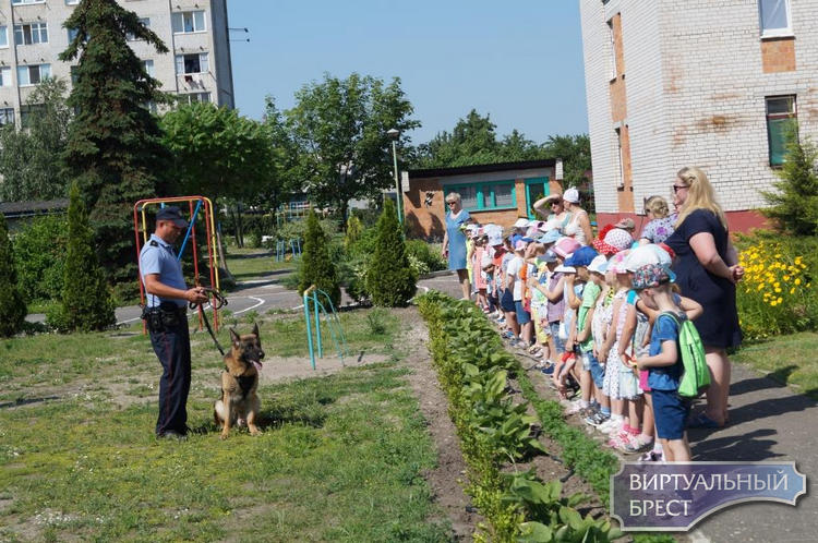 В детском саду № 79 г. Бреста прошла акция «Безопасные каникулы»