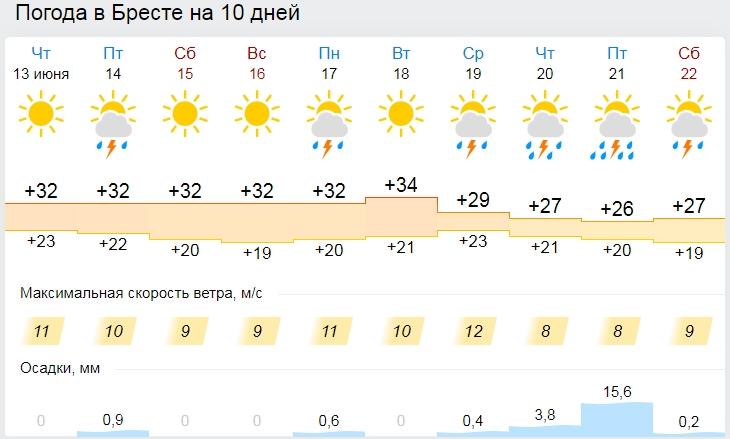 Температурные рекорды побиты в Минске и областных центрах 12 июня. Что дальше?