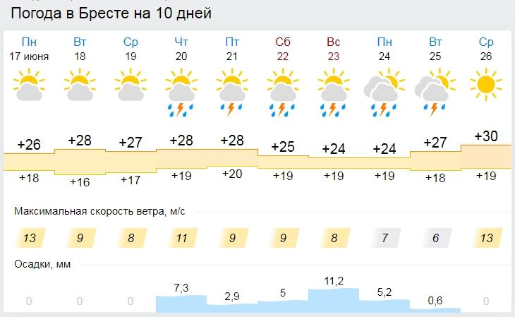 Жара спадет, придут дожди. Погода в Бресте на этой неделе