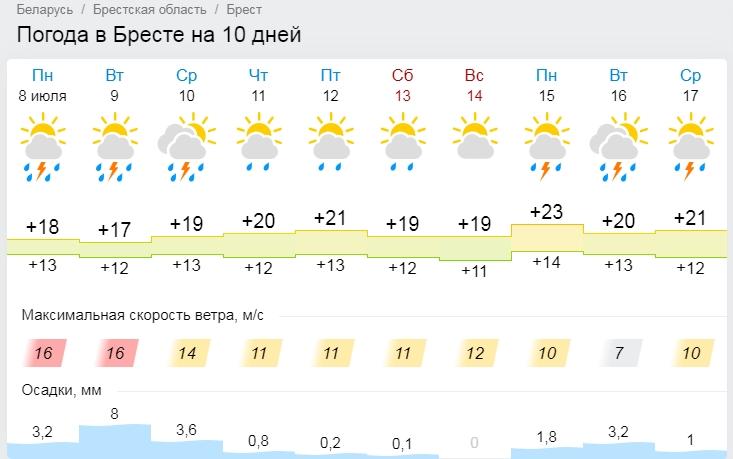 В Брест возвращается весна. Все о погоде на этой неделе