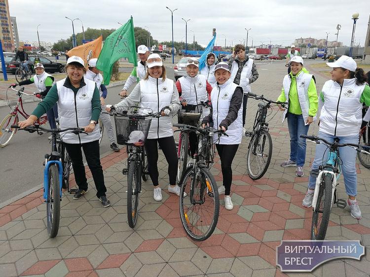Велопробег в честь Дня без автомобиля проводится в Бресте