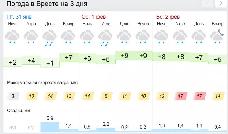 Весна! В первые выходные февраля в Бресте будет +10°С