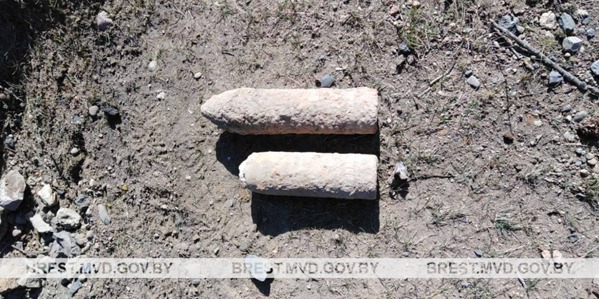Школьник в Барановичском районе нашел боеприпас