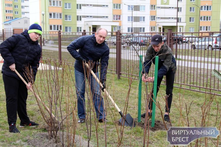 Месячник по благоустройству и наведению порядка продолжается в Московском районе