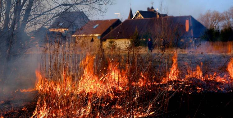 3 апреля на территории Брестской области зарегистрировано 7 пожаров