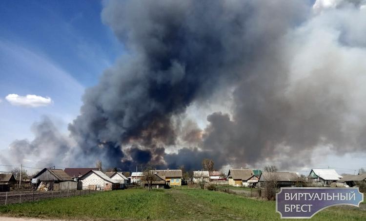 Всё небо чёрное! Крупный пожар полыхает в Дрогичинском районе. Огонь подходит к деревням