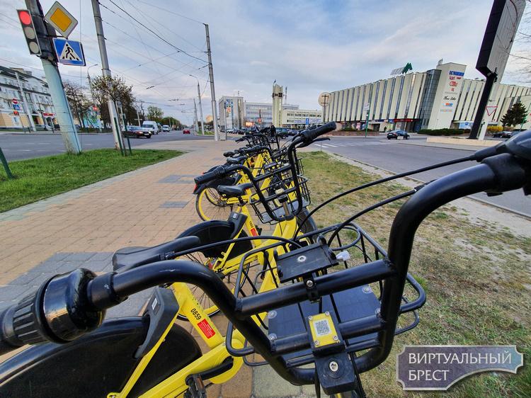 """Как на Колобайк """"наехали"""" и теперь им нужно установить на велосипеды зеркала заднего вида"""