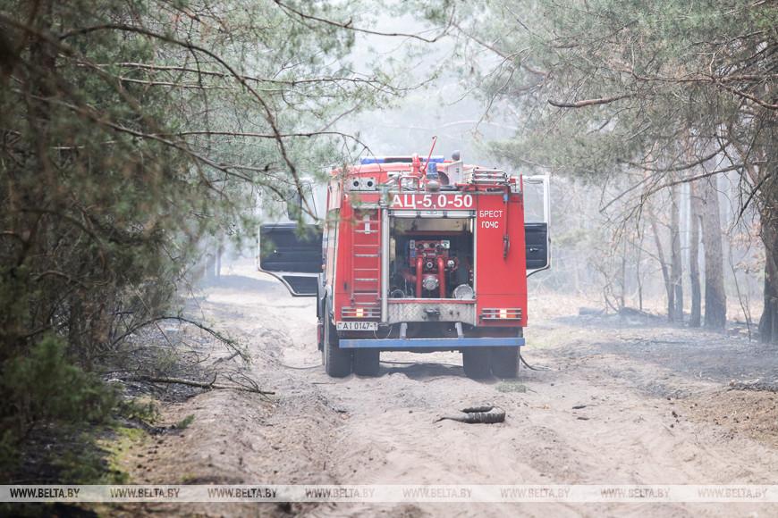 Побывали на месте страшного пожара в Задворцах. Там выжжена земля, пепелище и запах гари