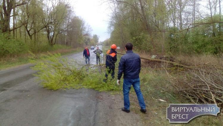 Предприятия Брестского городского ЖКХ приняли участие в республиканском субботнике