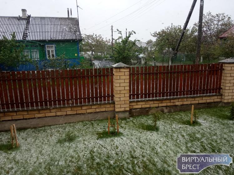 """Слышали, в Гродно снег выпал? А Брест что, хуже? Фото из нашего """"огорода"""""""