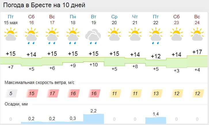 Прохладная погода ожидается в Беларуси в выходные