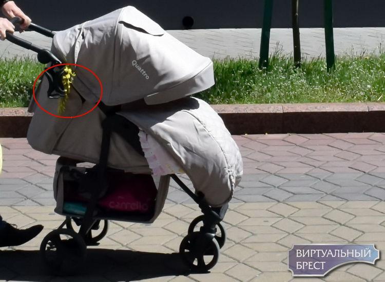 Осторожно! Красивый, но ядовитый «золотой дождь» украшает пешеходную улицу Советскую