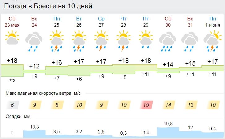 Ночные заморозки ожидаются на востоке Беларуси 24 мая. А в западной - пройдут дожди