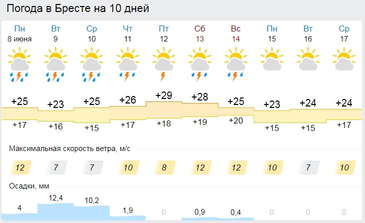 Кто заказывал жару? До +32°С ожидается в Беларуси 9 июня