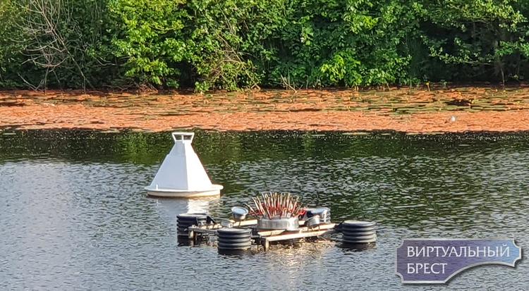 Большой фонтан на Набережной не работает. Есть версия про красную пену на водной глади Мухавца