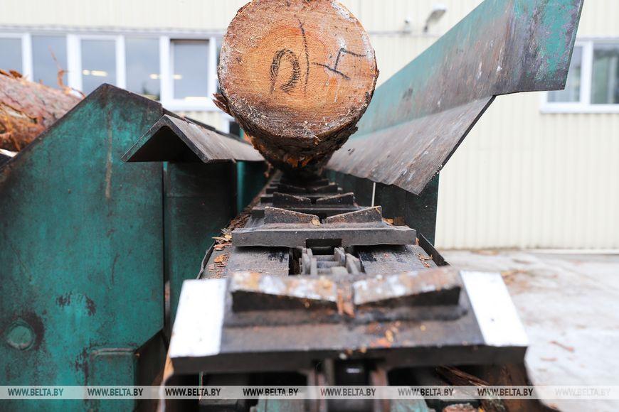 В переработке даже щепки: Пружанский лесхоз развивает производство в бывшем военном городке