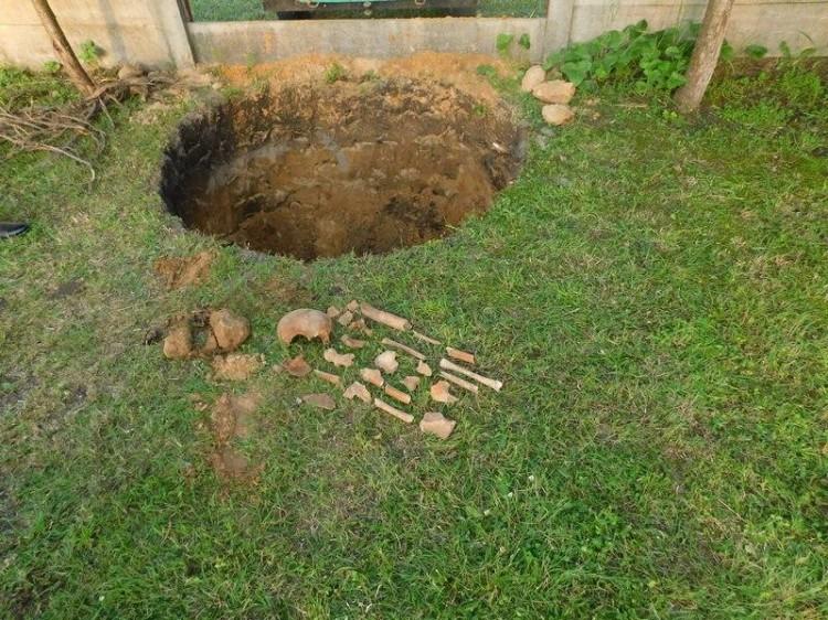 Житель Пружанского района обнаружил на своем участке костные останки
