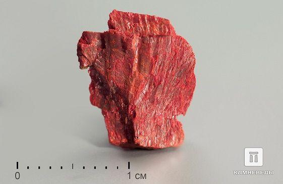 Как брестские студенты нашли редчайший минерал гетчеллит
