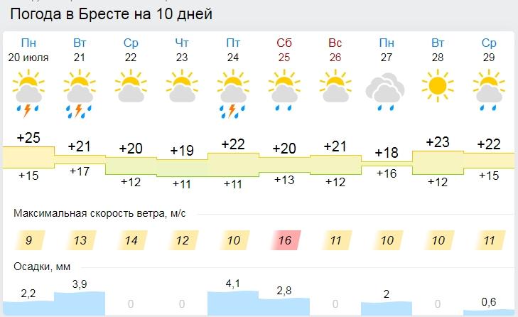 Жара спадет, придут дожди и сильный ветер. Все о погоде в Бресте на этой неделе