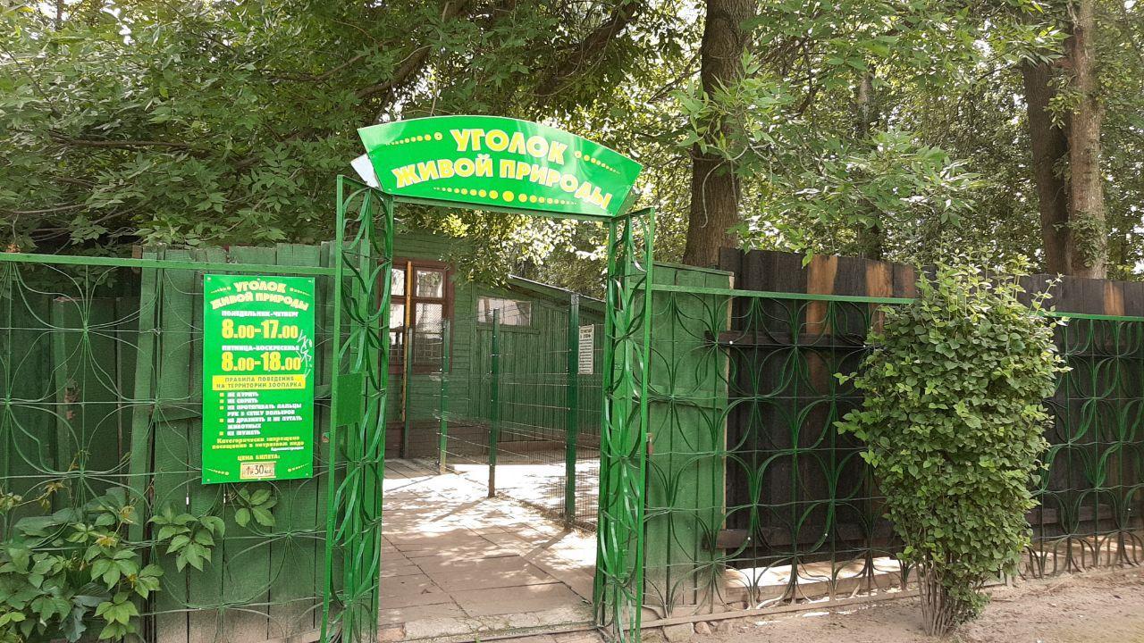 Артисты пожаловались Рогачуку на плохое содержание животных в парке Бреста. Есть решение