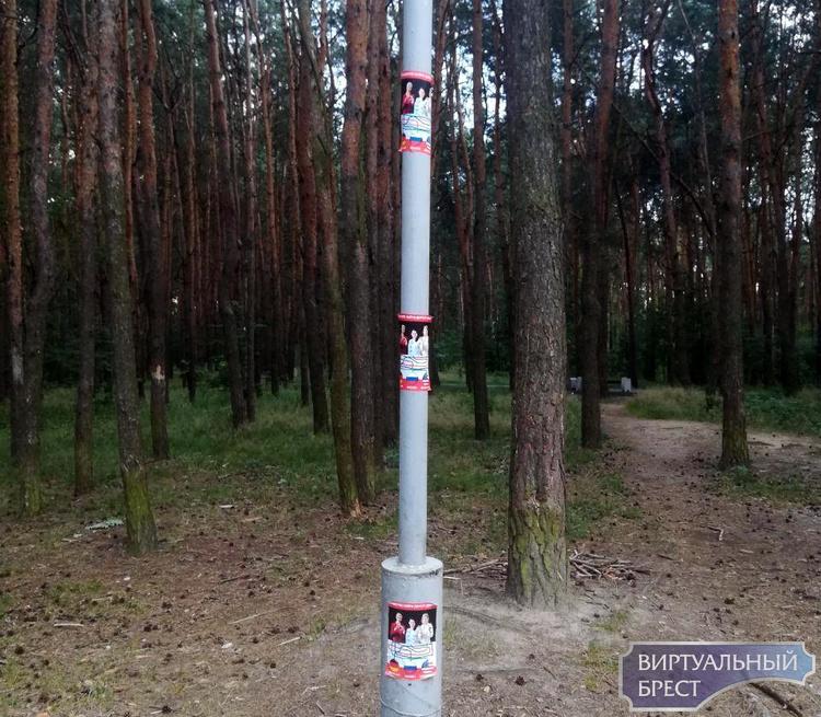 Неизвестные расклеили в парке, где состоится пикет Тихановской, провокационные листовки