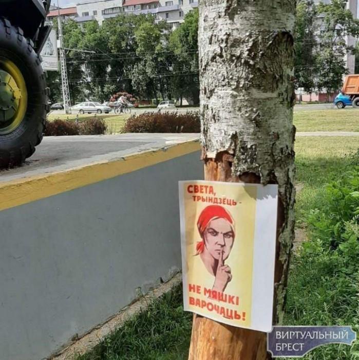 В парке «Воинов-интернационалистов» развесили листовки про Свету и 97$ в час