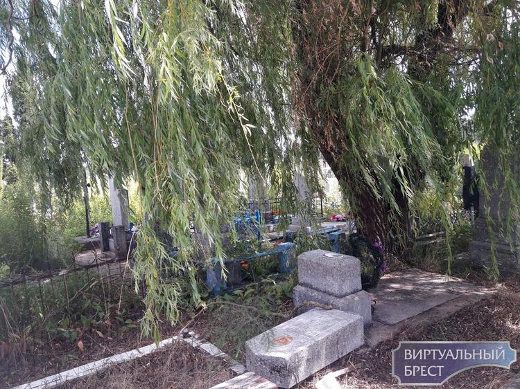 Никто не забыт, но памятник снесём? Ищем родственников для восстановления захоронения