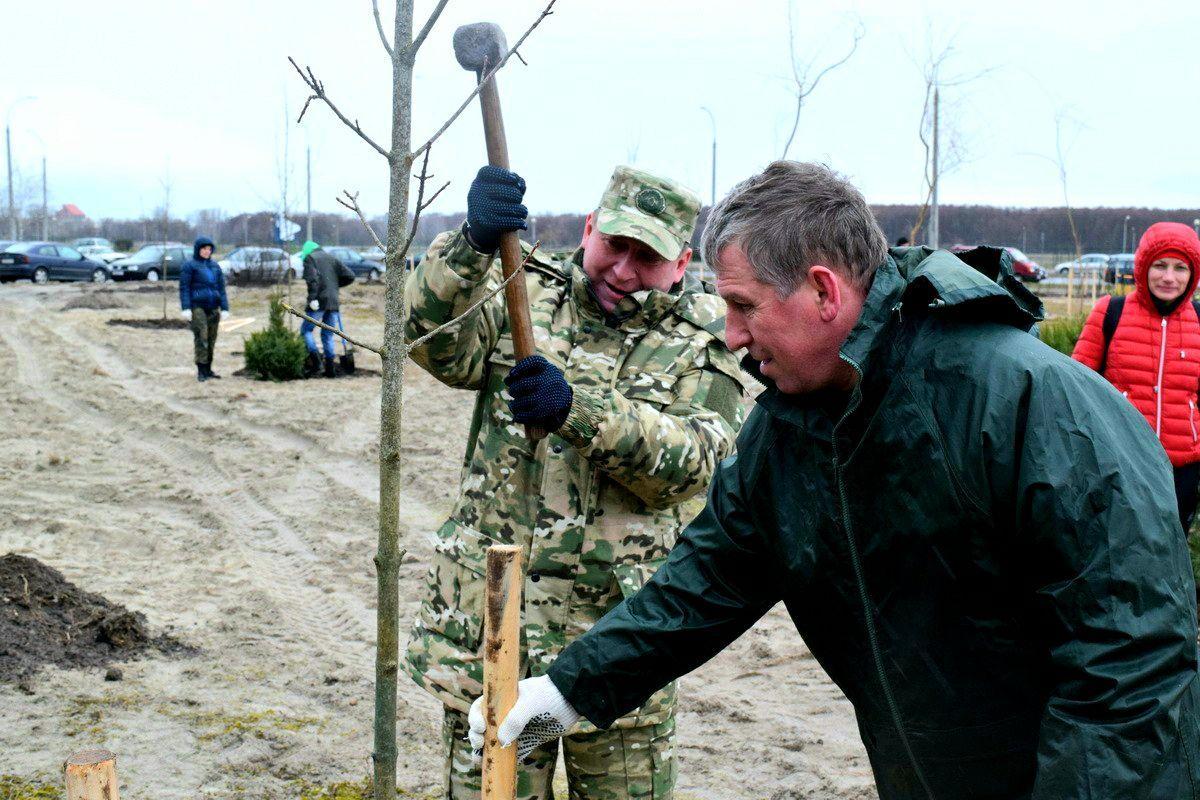 Рогачук напомнил, что ... «Дерево сажает один человек, а в его тени отдыхают тысячи людей»